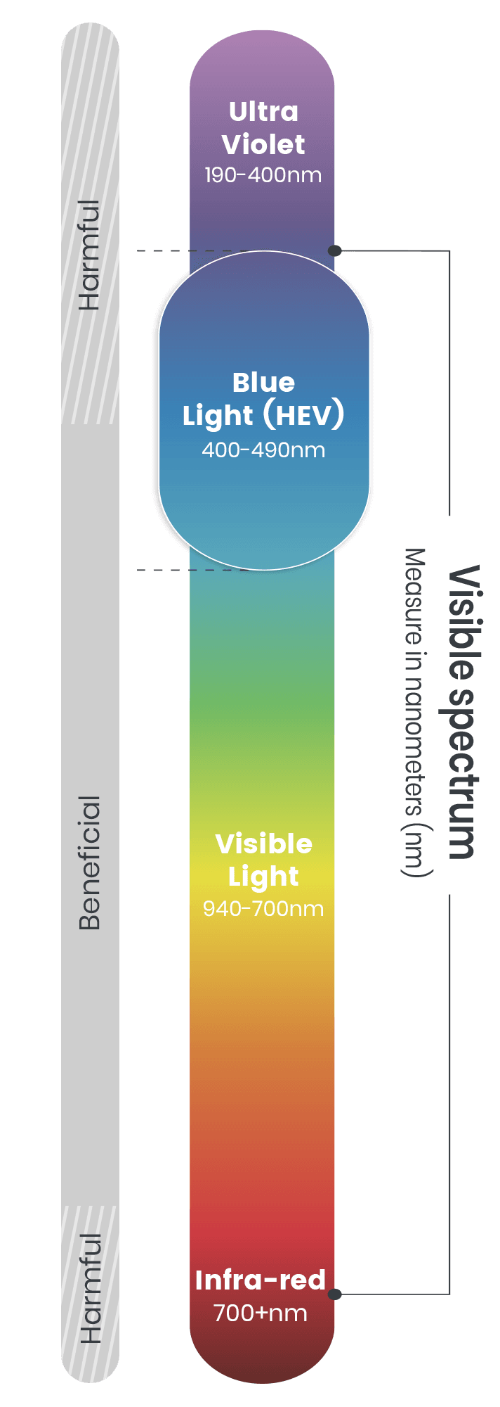 Visible light spectrum: ultra violet, blue light, visible light, infra-red