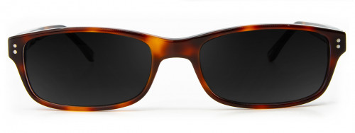 Blair - Amber Tortoise - Sunglasses Glasses