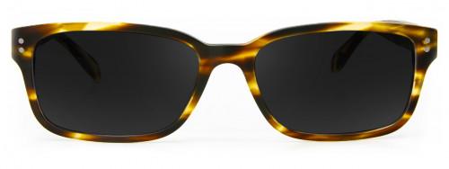 Broome - Honey Tortoise - Sunglasses Glasses