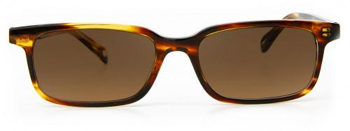 Crispin - Brown Tortoise - Sunglasses Glasses