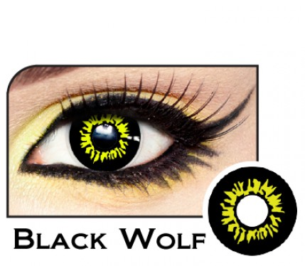 yellow and black wolf contacts